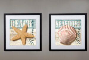 Cuadros estrella de mar caracol