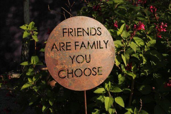 Pincho Friends Family