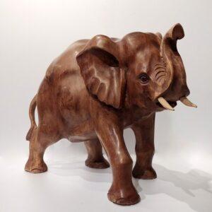 Elefante 25